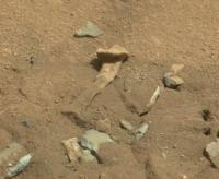 thigh-bone-on-mars.jpg